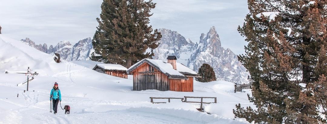 Winter walk Canvere