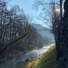 An der Nagold in Bad Liebenzell