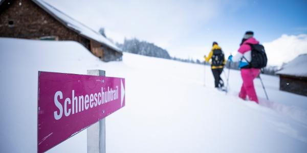Signalisierter Schneeschuh-Trail Mädems bei Schönhalden
