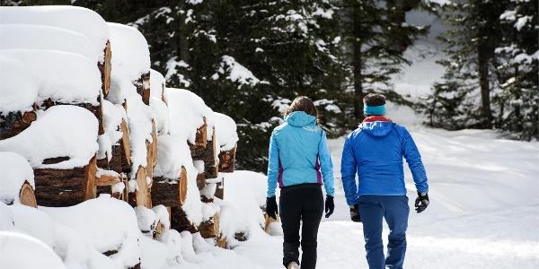 Passeggiata invernale