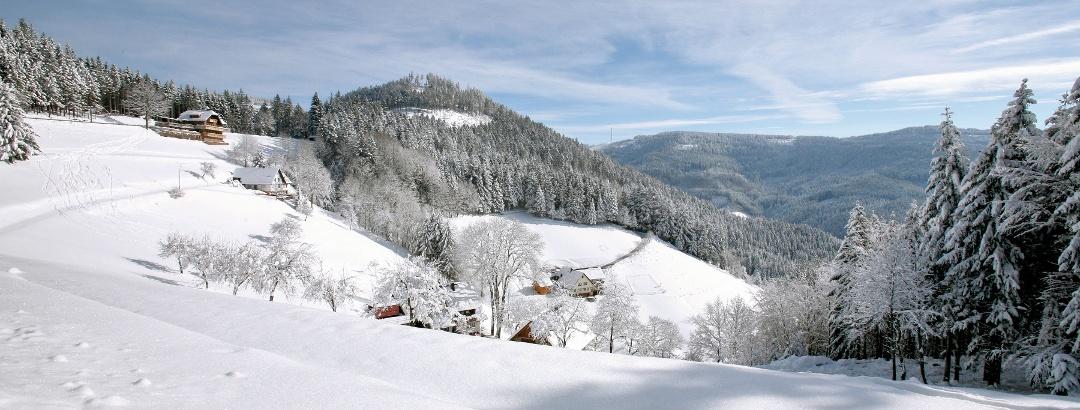 Bad Peterstal-Griesbach/Winter im Tal der Wilden Rench mit Blick auf die Renchtalhütte