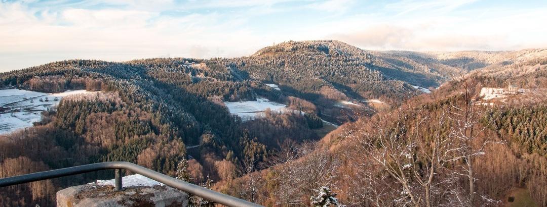 Bad Peterstal-Griesbach/Blick vom Habererturm auf die umliegenden Schwarzwaldhöhen