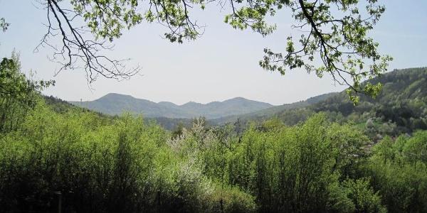 Schöne Aussicht an der Lourdesgrotte