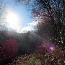 Wanderweg in der Morgensonne
