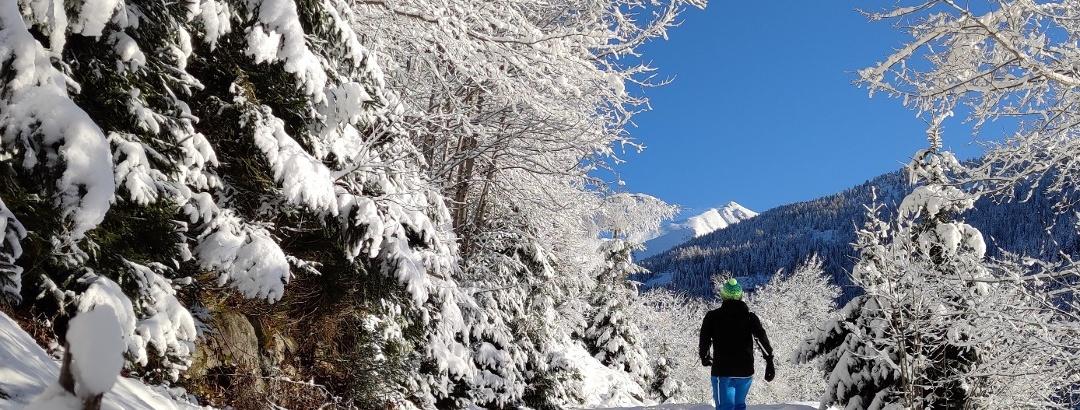 Frische Luft und frische Spuren auf der Vorderwaldrunde