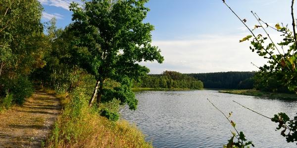 Leubatalsperre Wanderweg Ostufer