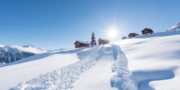Winterwanderweg/Schlittelweg Wergenstein-Dumagns
