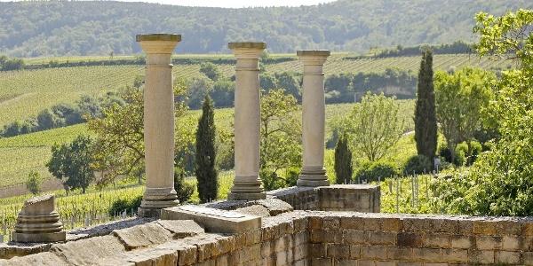 Säulen vor Pfälzerwald