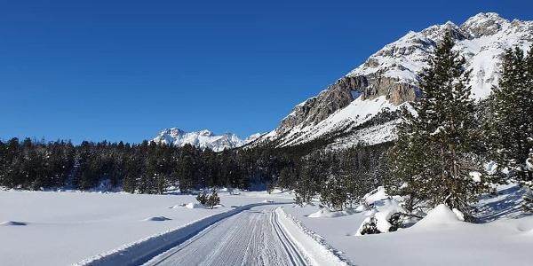 Blick in Richtung Schweizerischer Nationalpark, Nord-Westen