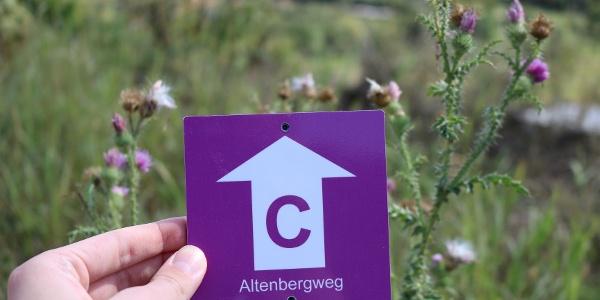 Altenbergweg