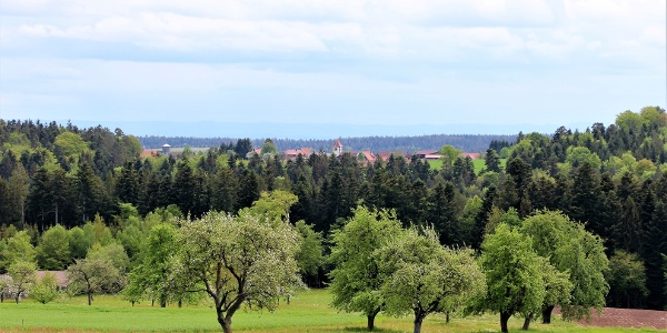 Aussicht auf Breitenberg