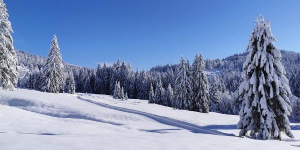 Winterlandschaft in Sibratsgfäll