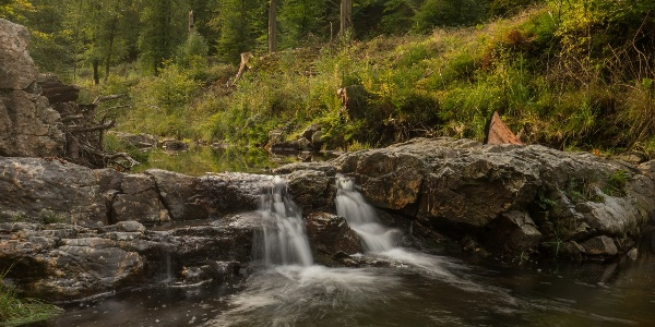 Wandern im Hertogenwald/Ternell