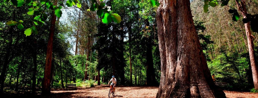 Radfahren in Viveiro – Galicien