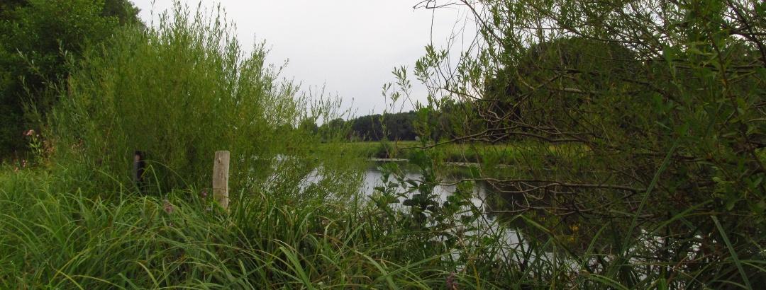 Kanal bei Märkisch Buchholz