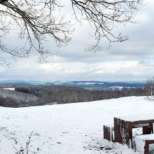 Weitblick vom Eulenkopf 469 hm