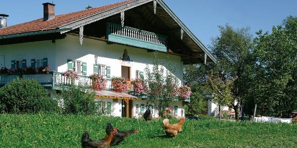 Bauernhof Fritz