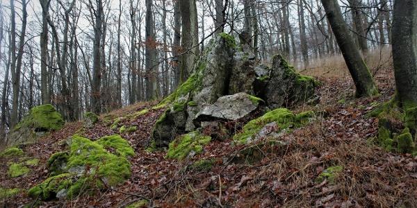 Felsen am Auenberg