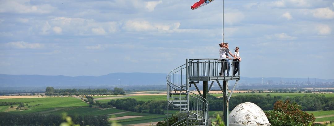 Aussichtsturm Flörsheim-Dalsheim 2