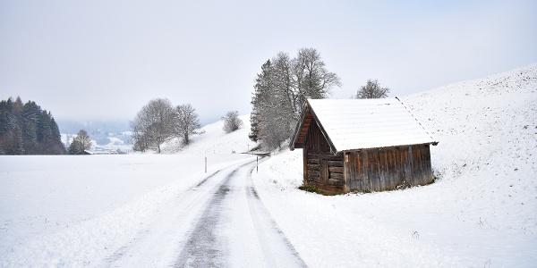 Winterwanderung Roter Bichl