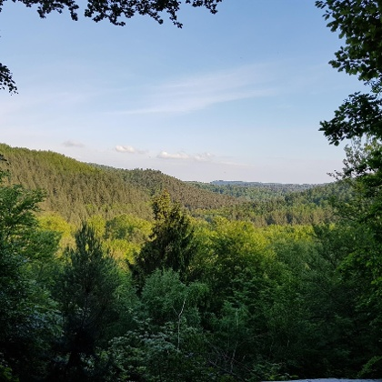Blick ins Clauser Tal