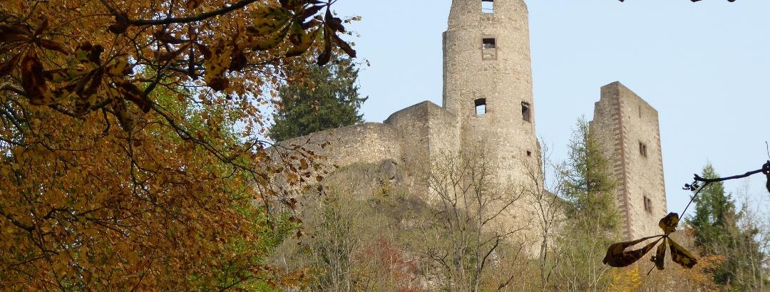 Burgruine Schönecken