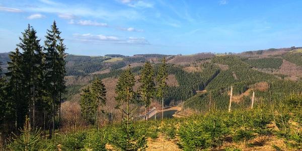 Blick zur Wildenwiese, im Tal das Unterbecken vom Pumpspeicherwerk