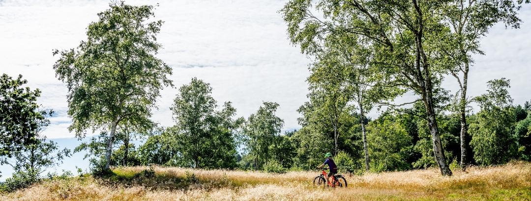 Radfahren auf Mors
