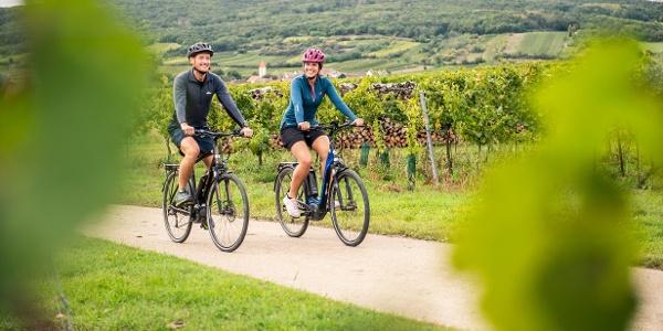 Vorbei an zahlreichen Weingärten