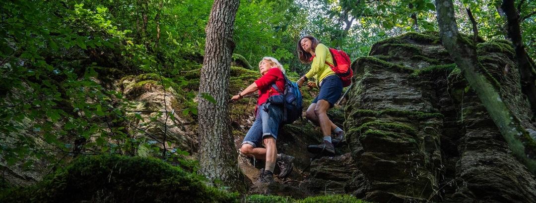 Kletterpassagen im Grün