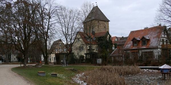 Rossweiher in Altdorf