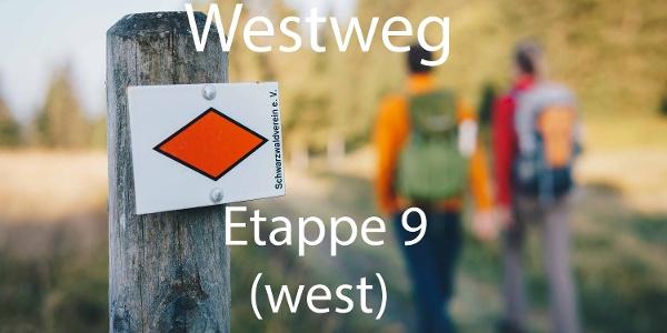 Westwegraute