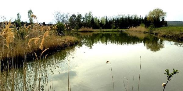 Watzelsdorf Wasserwelt