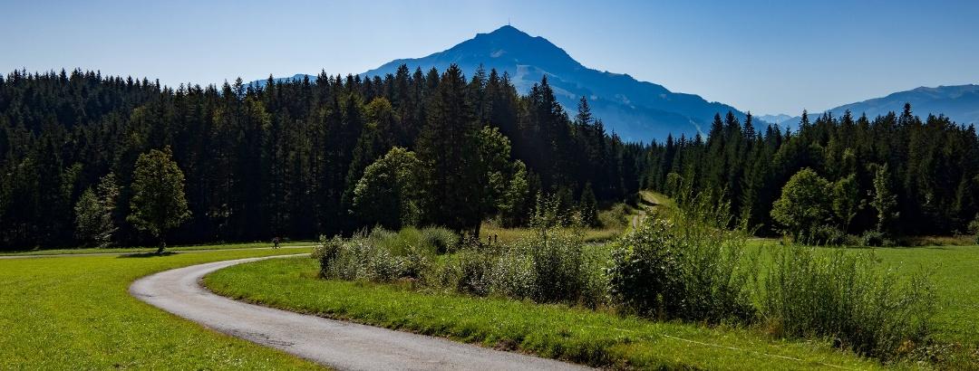 Kitzbühel Alps
