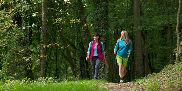 Wanderung im Wald   Bad Kissingen