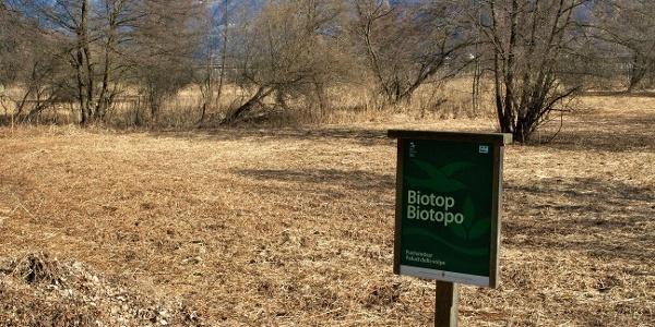 Die Route führt am Biotop Fuchsmöser vorbei