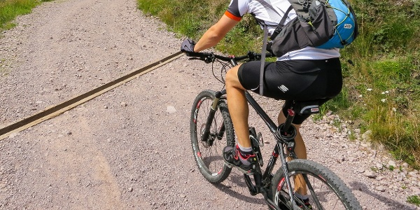 Almost the entire tour runs along the shaded pine forests of the Val Maggiore.
