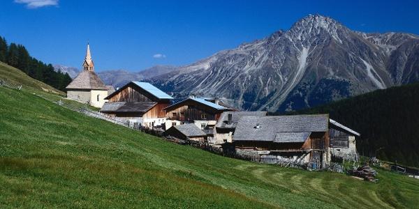 Kurz vor Rojen im Vinschgauer Oberland führt die Tour leicht ansteigend zur Rescher Alm.