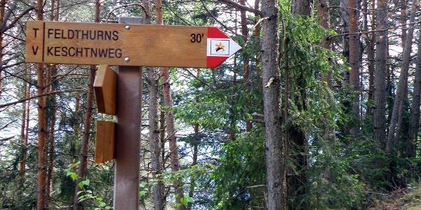 Von Feldthurns geht es den gut beschilderten Keschtnweg entlang.