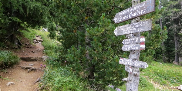 """On the path number 22 to """"passo Feudo"""""""