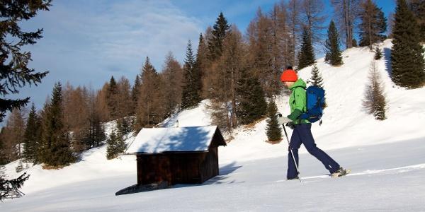 Von der Hütte steigt man nach Norden auf den oberhalb liegenden Sulzbichl.