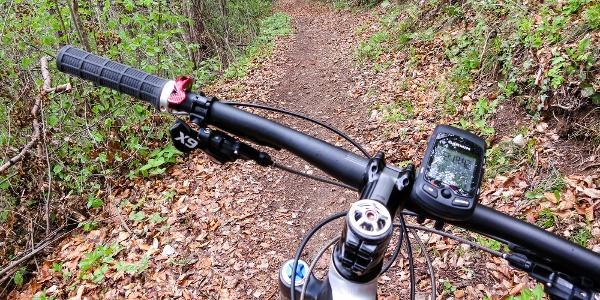 Über den Ötzi-Trail am Nördersberg hinunter nach Naturns.
