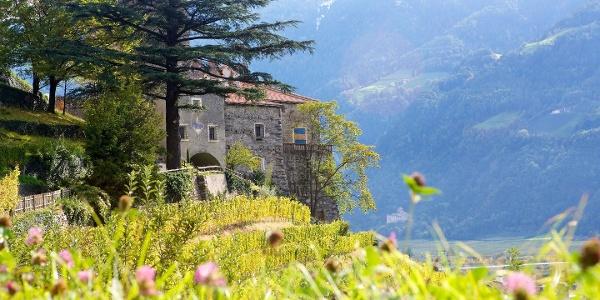 Vorbei am Schloss Hochnaturns führt die Mountainbiketour auf den Naturnser Sonnenberg.