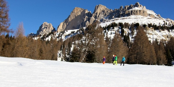 From the Passo Costalunga to the Latemar meadows.