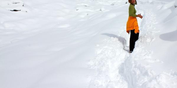Durch das frische Weiß zur Kalcheralm wandern.