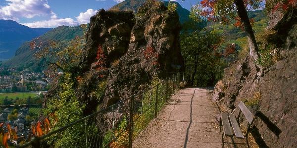 """Die Sankt-Oswald-Promenade mit den sogenannten """"Wilden Mander"""""""