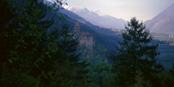 Blick auf Schloss Tarantsberg bei Plaus