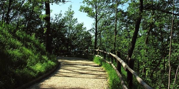 Promenade hoch zur Haselburg