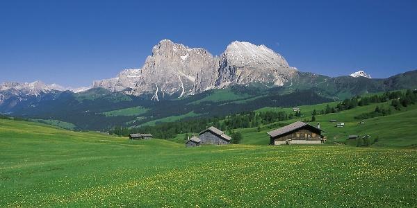 Blick über die Seiser Alm, der größten Hochalm Europas, zur Langkofelgruppe