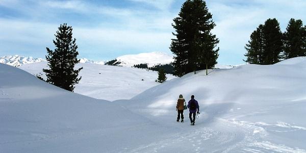 Winterwandern am Würzjoch.